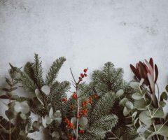 Musik och annat du behöver för partystämningen i jul